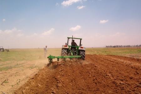 Россельхозбанк вскором времени начнет кредитовать аграриев поставке 5%